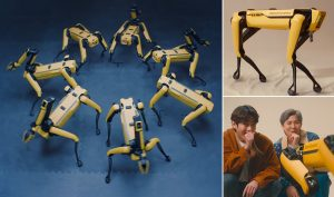 Robot Spot nhún nhảy nhịp nhàng theo bài hát của nhóm nhạc BTS